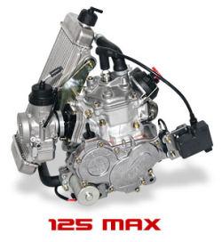 15 ans kart v max rotax max 125 cc 28 5 cv action karting karts neufs. Black Bedroom Furniture Sets. Home Design Ideas